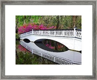 Magnolia White Bridge Framed Print