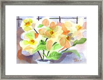 Magnolias In Bloom Framed Print by Kip DeVore