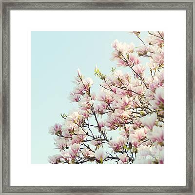 Magnolias Framed Print by Sylvia Cook
