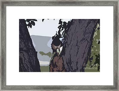 Magpie Morning  Framed Print