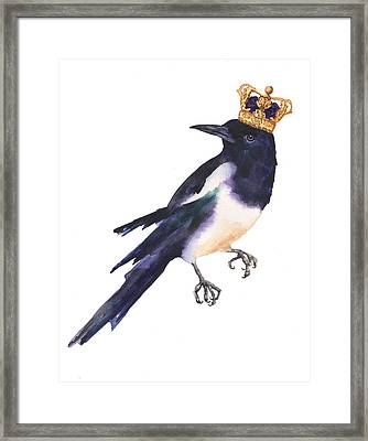 Magpie Watercolor Framed Print by Alison Fennell