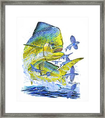Mahi Mahi Framed Print by Carey Chen