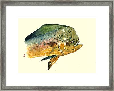 Mahi Mahi Fish Framed Print by Juan  Bosco