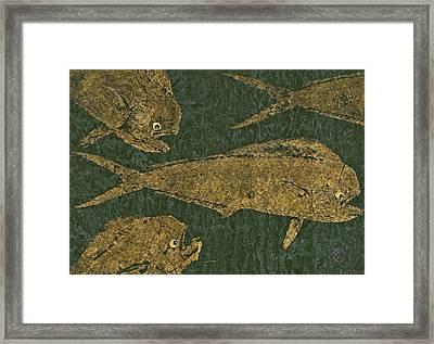Mahi Mahi On Black W/ Gold Thread Unryu Paper Framed Print
