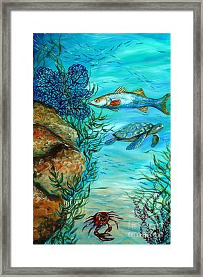 Maho Bay Center Framed Print