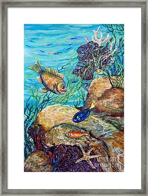 Maho Bay Left Framed Print