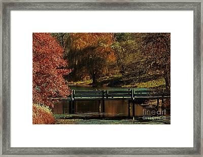 Mahoney State Park Framed Print by Elizabeth Winter