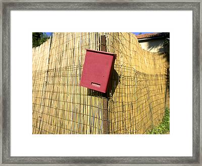 Mail Box On Bamboo Fence Framed Print by Daniel Blatt