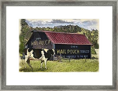 Mail Pouch Barn With Cow Framed Print by Mary Almond