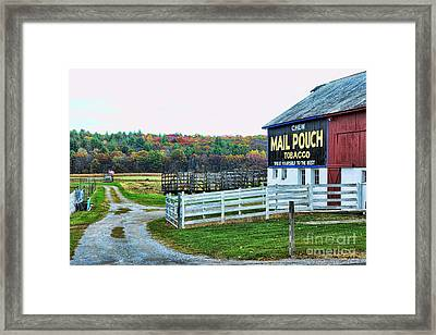 Mail Pouch Tobacco Barn In The Fall Framed Print by Paul Ward