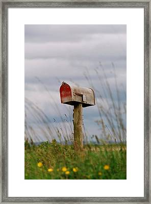 Mailbox Framed Print by Michele Wright