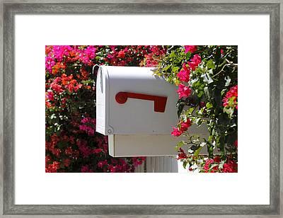 Mailbox Framed Print