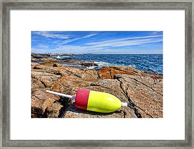 Maine Coast Framed Print by Olivier Le Queinec