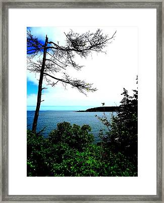 Maine Framed Print by Dancingfire Brenda Morrell