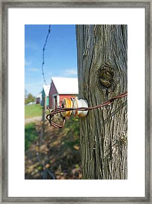 Maine Electric Fence Framed Print by Melissa C