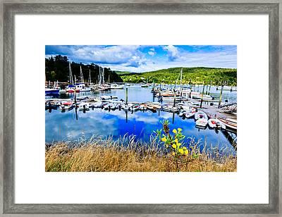 Maine Harbor Framed Print