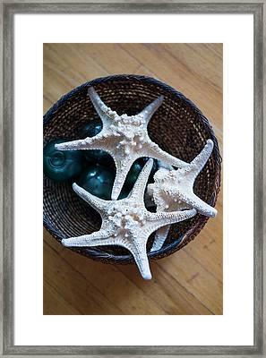 Maine, Pemaquid Point, Dried Starfish Framed Print by Walter Bibikow