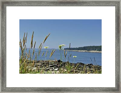 Maine Seascape Penobscot Bay Framed Print by Marianne Campolongo