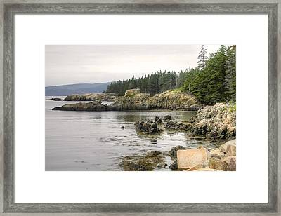 Maine's Beautiful Rocky Shore Framed Print