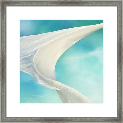 Mainsail 3 Framed Print by Laura Fasulo