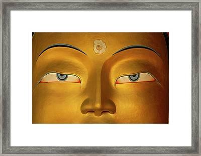 Maitreya Close Up Of Buddha Framed Print by Colin Monteath