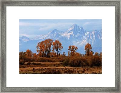 Majestic Backdrop Framed Print by David Andersen