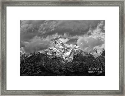 Majestic Framed Print by Charlene  Aycock