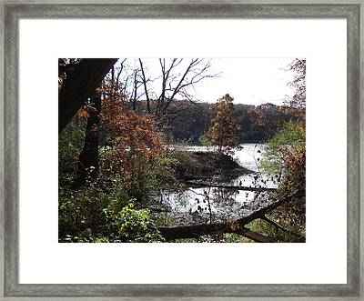 Framed Print featuring the photograph Majestic Fall by J L Zarek