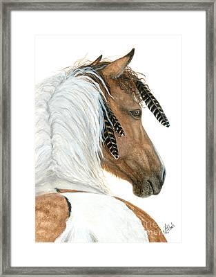 Majestic Curly Horse Framed Print by AmyLyn Bihrle