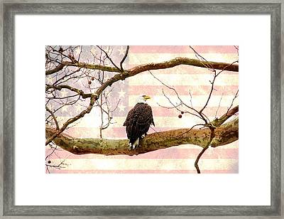 Framed Print featuring the photograph Majestic II by Trina  Ansel