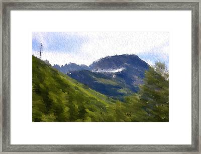 Majestic Framed Print by Kevin Bone