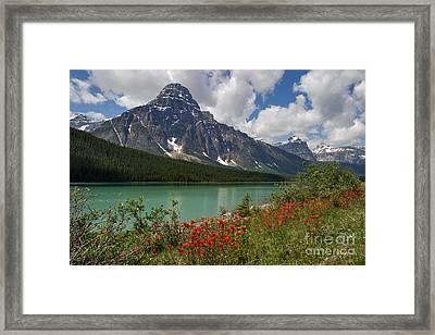 Majestic Mount Chephren Framed Print
