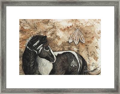 Majestic Curly Horse #52 Framed Print by AmyLyn Bihrle