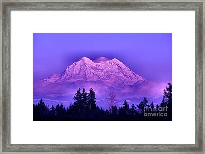 Majestic Framed Print by Rory Sagner
