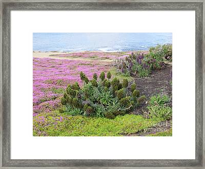 Majestic Shoreline Framed Print