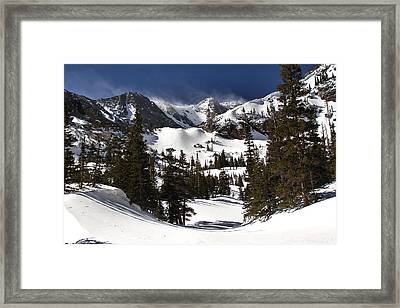 Majestic Framed Print by Steven Reed