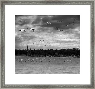 Major Migration Framed Print by Thomas Young