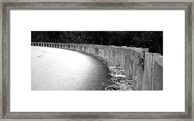 Make A Left At The Swamp Framed Print by Shawn Lyte