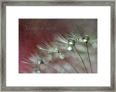 Make A Wish Framed Print by Angie Vogel