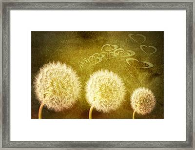 Make A Wish Framed Print by Amanda Elwell