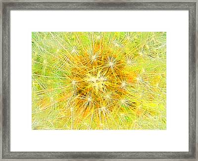 Make A Wish In Greenish Yellow Framed Print