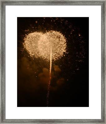 Framed Print featuring the photograph Make A Wish by Linda Mishler
