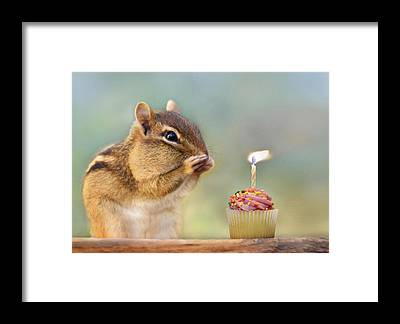 Birthday Cards Framed Prints