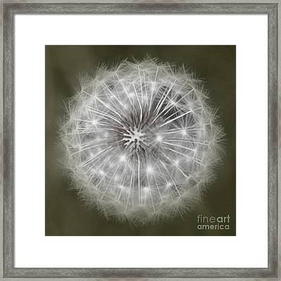 Framed Print featuring the photograph Make A Wish by Peggy Hughes