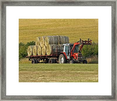 Make Hay When Sun Shines Framed Print by Paul Scoullar