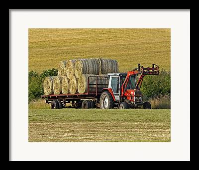 Halebales Framed Prints