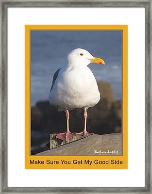 Make Sure You Get My Good Side Poster Framed Print by Barbara Snyder