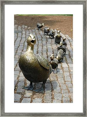 Make Way For Ducklings Framed Print by Christiane Schulze Art And Photography