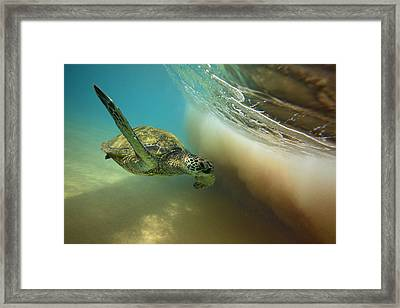 Makena Surfer Framed Print