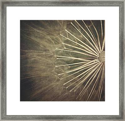Making A Wish...  Framed Print by Maria Angelica Maira